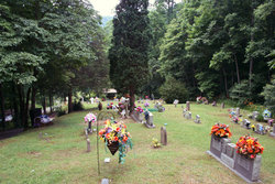Whitaker Cemetery (Premium)