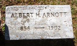 Albert H Arnott