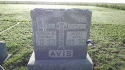 Avery Avis
