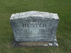 Roland Arthur Hester