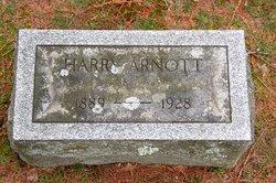 Harry Arnott