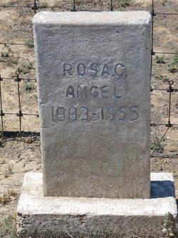 Rosa Carolina <i>Williams</i> Angel