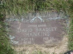David Bradley Hankins