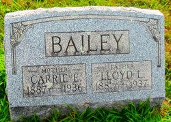 Carrie E Bailey