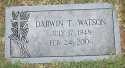 Darin T Watson