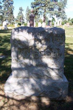 Glaucus S Ambler