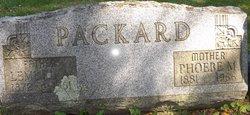 Lemuel A Packard