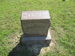 John Needham