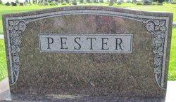 Henry W Pester
