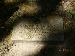 Lieut Harold R. Hal Zabawa