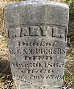Mary L. Biggers