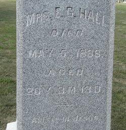Mrs E. G. Hall