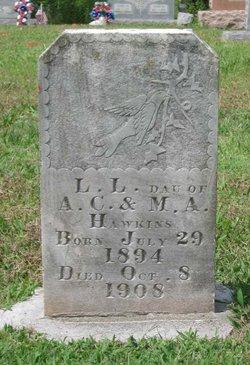 Lizzie Lee Hawkins
