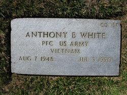 Anthony B White