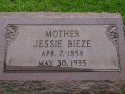 Jessie Tjaaktje <i>Rogaar</i> Bieze