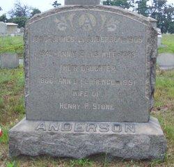 Ann Elizabeth Annie <i>Wood</i> Anderson