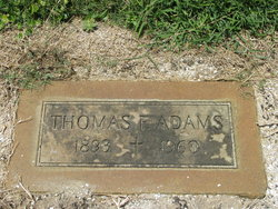Thomas F Adams