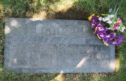 Frank Bryant Goodin, Sr.