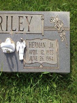 Herman Briley, Jr