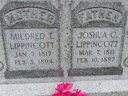 Joshua Coles Lippincott