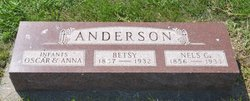 Nels G. Anderson