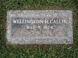 Wellington Horatio Callin