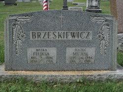 Feliksa Brzeskiewicz