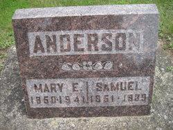 Samuel Horton Anderson