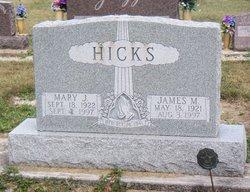 Mary Waneta <i>Landers</i> Hicks
