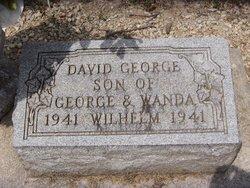 David George Wilhelm