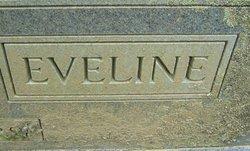 Eveline <i>Blevins</i> Brinegar