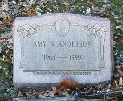 Amy N Anderson