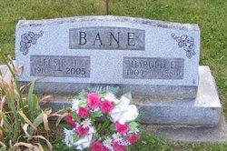 Harold Bane