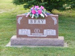 Shirley Ilene <i>Arteman</i> Bray