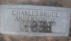 Charles Bruce Anderson, Jr