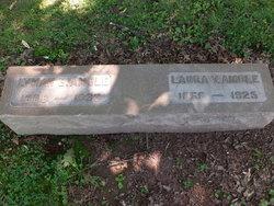 Laura V. Amole