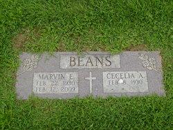 Marvin E. Beans