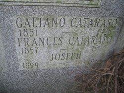Francis <i>Cantella</i> Cataraso