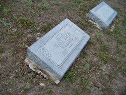 Mary Elizabeth <i>Davis</i> Williams