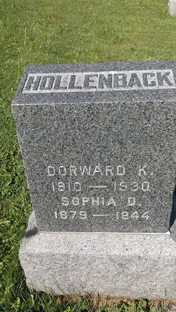 Sophia D Hollenback