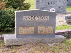 Newt Anderson