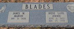 Irene Jimmie <i>Land</i> Blades