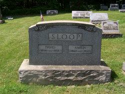 David Sloop