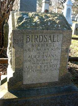Herbert I Birdsall