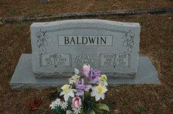 James Bailey Baldwin