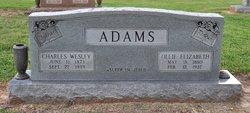 Charles Wesley Charlie Adams