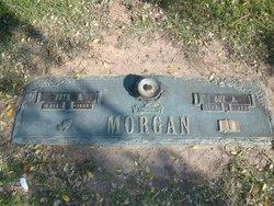 Guy A Morgan