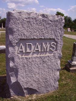 Dr D B Adams