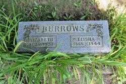 Elisha Burrows
