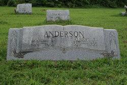 Bashie W Anderson